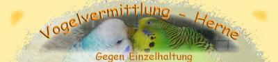 Finni - Vogelvermittlung Herne